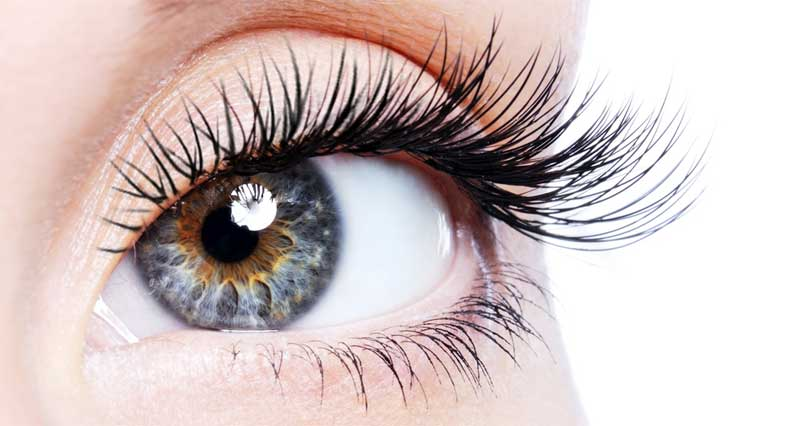 Basics of Eyelash Extensions